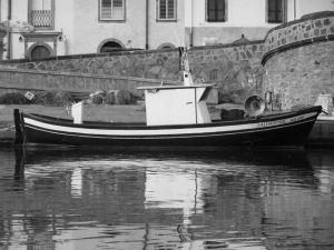 photo copyright Antonello Michele Mastinu